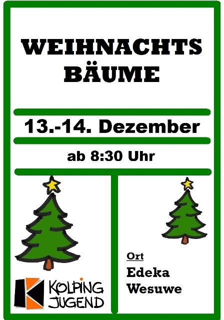 Weihnachtsbaumverkauf 2013